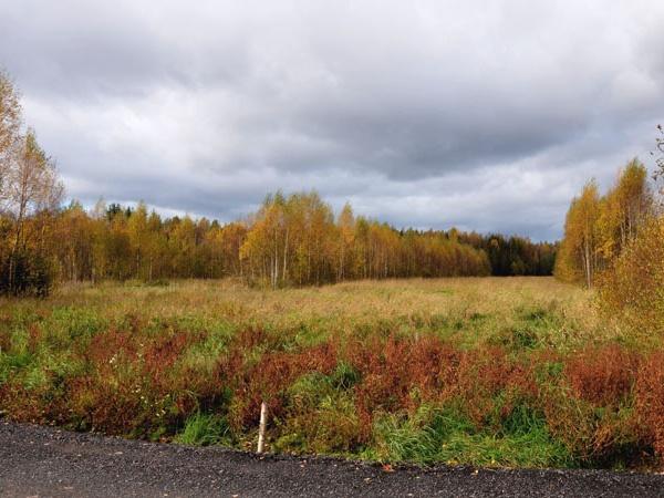 Осень в